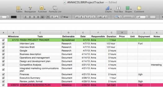 ANNACOLIBRI, how to organize a project, web presence, tech savvy, mompreneur