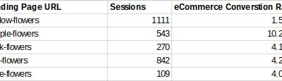 Analyzing Conversion Rates Within Google Analytics